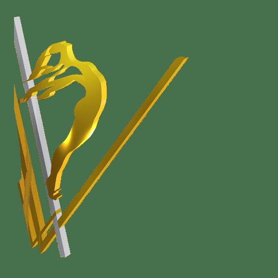 anima vinctum logo V