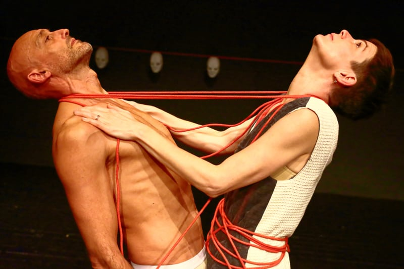 het archetype bewegingstheater archetypes anima vinctum